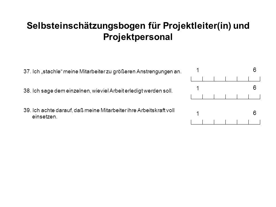 Selbsteinschätzungsbogen für Projektleiter(in) und Projektpersonal