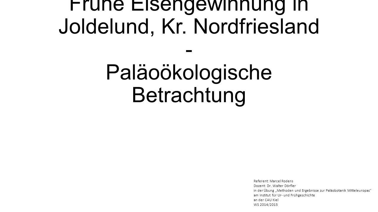 Frühe Eisengewinnung in Joldelund, Kr