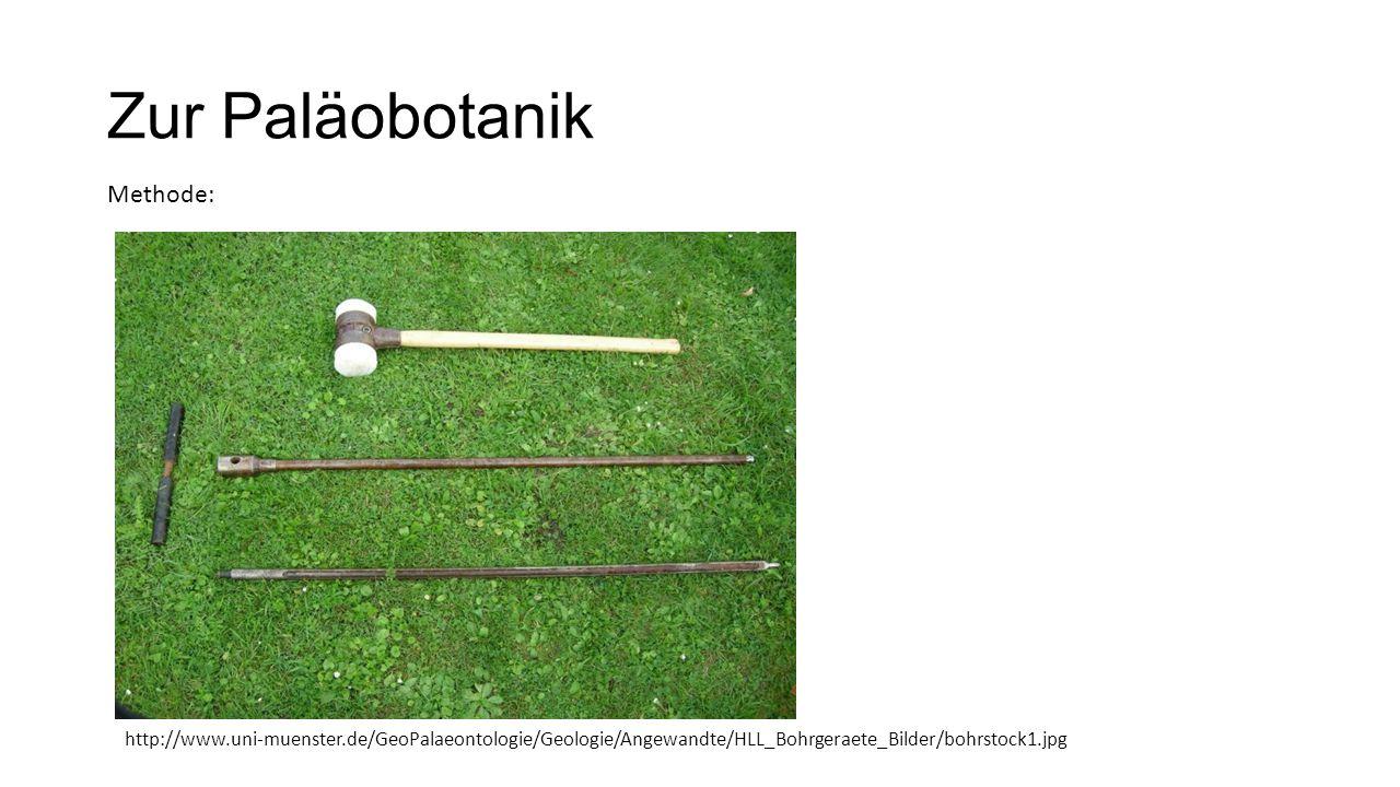 Zur Paläobotanik Methode: