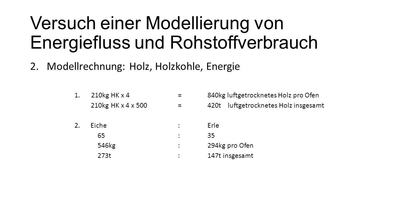 Versuch einer Modellierung von Energiefluss und Rohstoffverbrauch