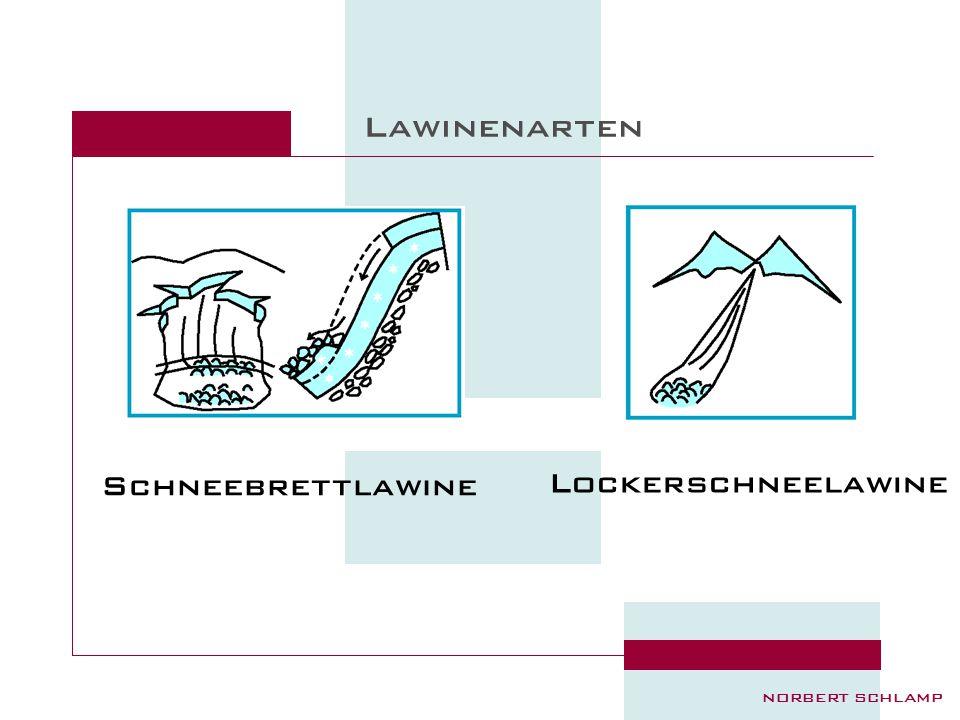 Lawinenarten Schneebrettlawine Lockerschneelawine Einteilung :