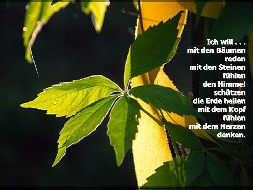Ich will . . . mit den Bäumen reden. mit den Steinen fühlen. den Himmel schützen. die Erde heilen.