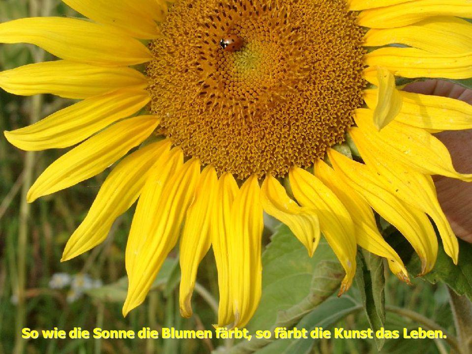 So wie die Sonne die Blumen färbt, so färbt die Kunst das Leben.