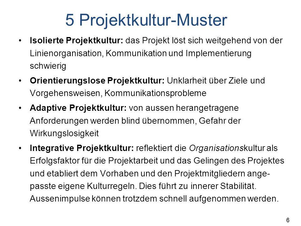 5 Projektkultur-Muster
