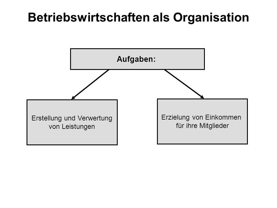 Betriebswirtschaften als Organisation