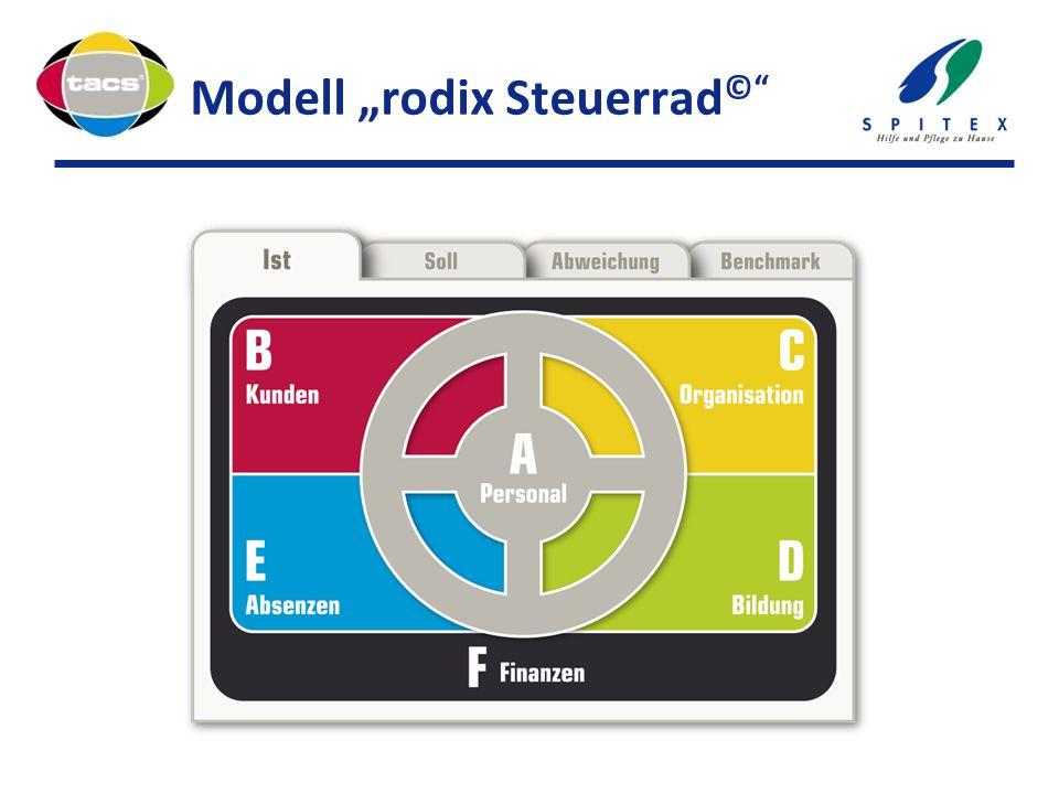 """Modell """"rodix Steuerrad©"""