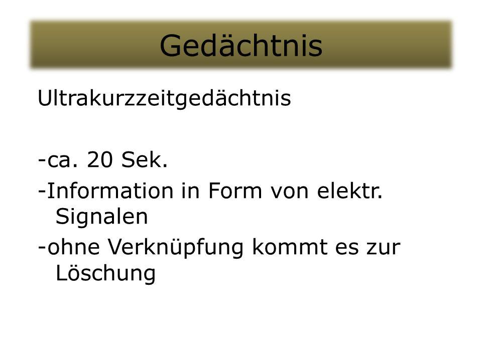 Gedächtnis Ultrakurzzeitgedächtnis -ca. 20 Sek. -Information in Form von elektr.