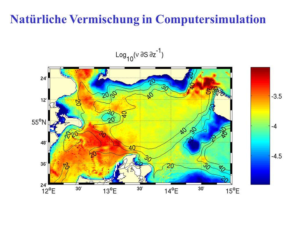 Natürliche Vermischung in Computersimulation