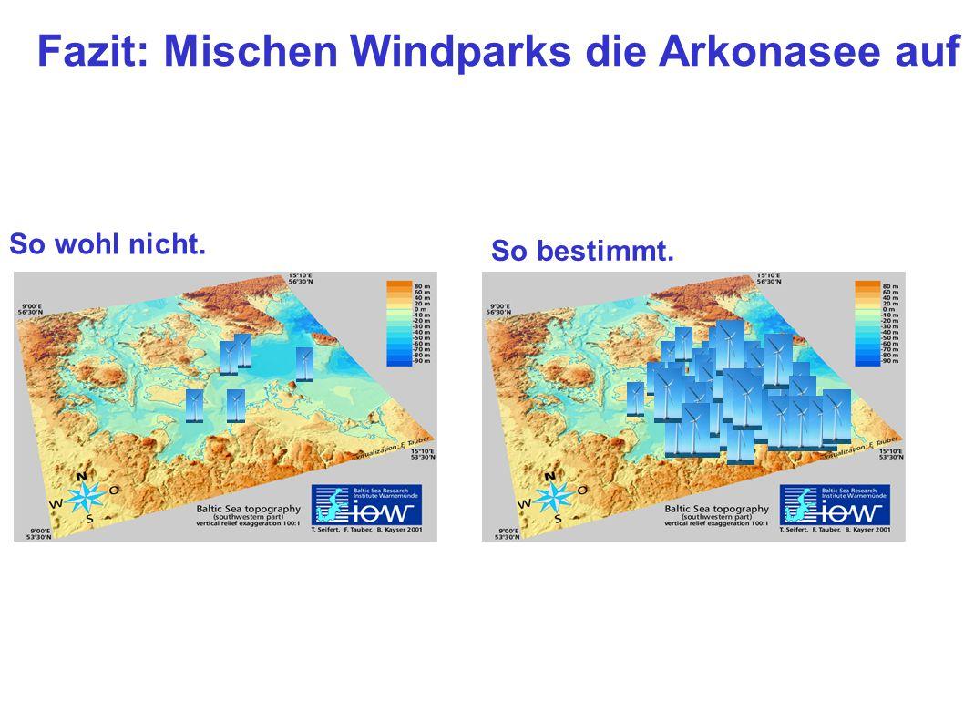 Fazit: Mischen Windparks die Arkonasee auf