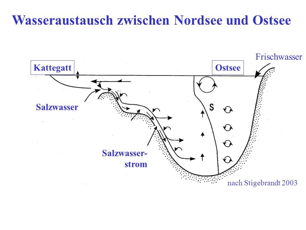 Wasseraustausch zwischen Nordsee und Ostsee