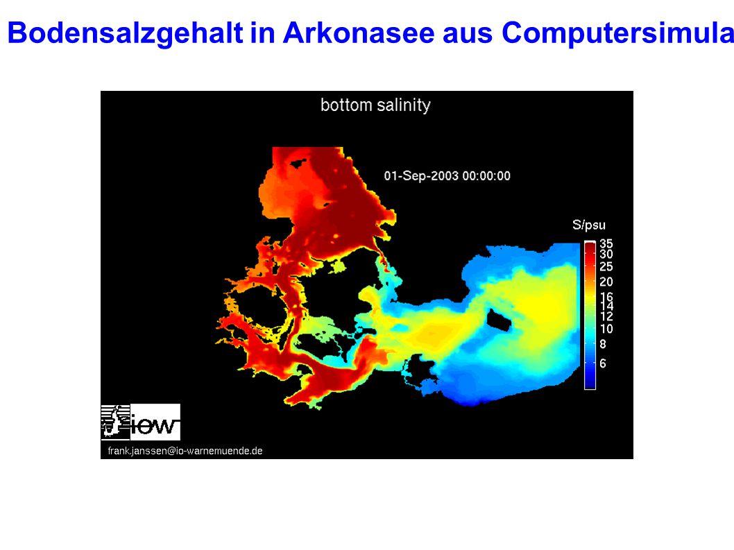 Bodensalzgehalt in Arkonasee aus Computersimulation