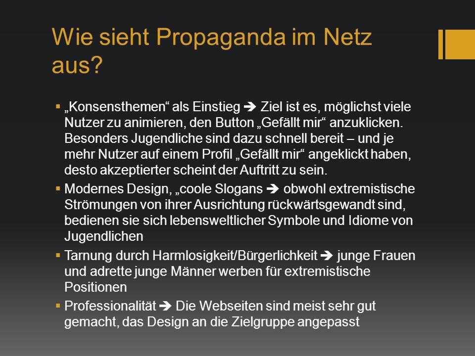 Wie sieht Propaganda im Netz aus