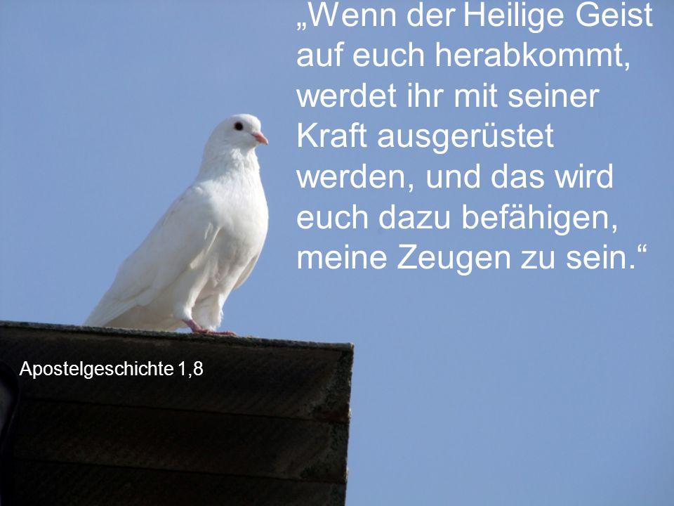 """""""Wenn der Heilige Geist auf euch herabkommt, werdet ihr mit seiner Kraft ausgerüstet werden, und das wird euch dazu befähigen, meine Zeugen zu sein."""
