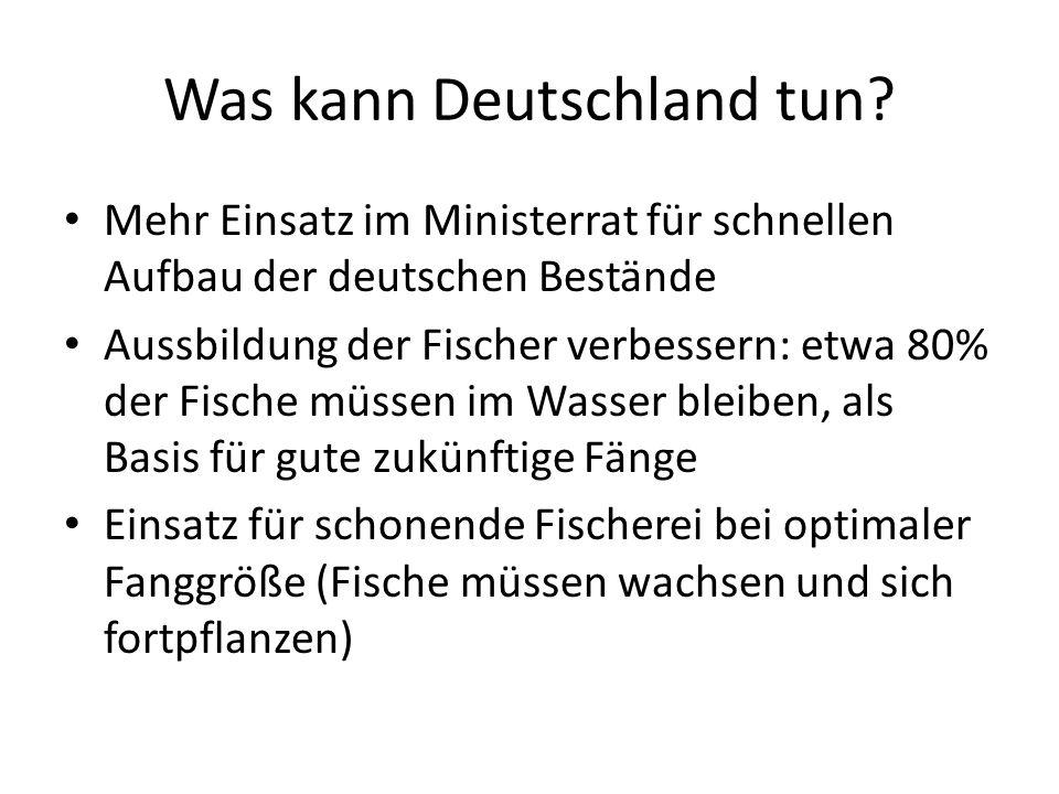 Was kann Deutschland tun