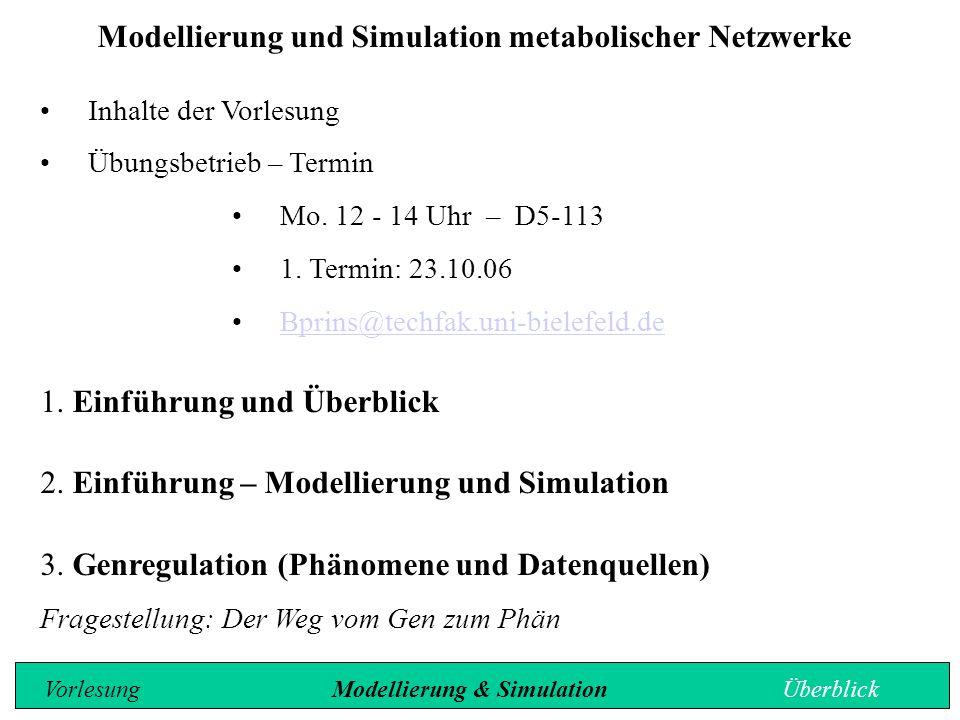 Modellierung und Simulation metabolischer Netzwerke