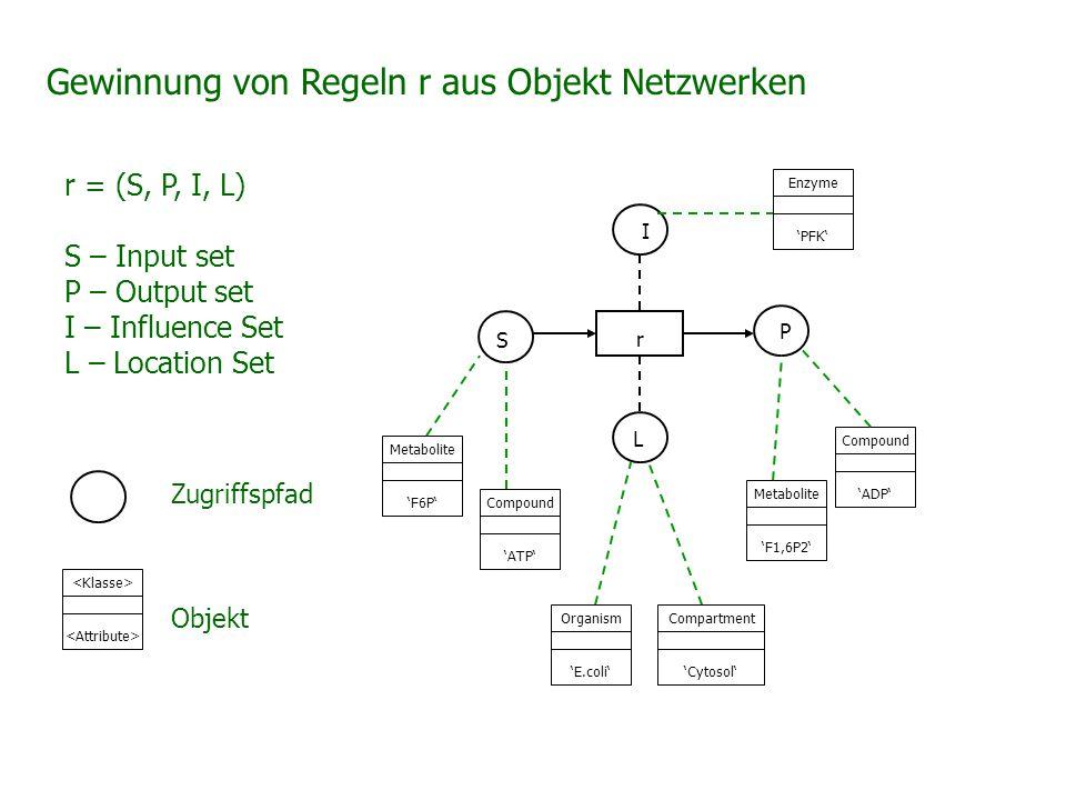 Gewinnung von Regeln r aus Objekt Netzwerken