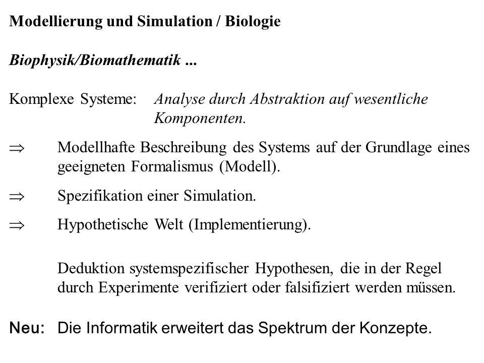 Modellierung und Simulation / Biologie