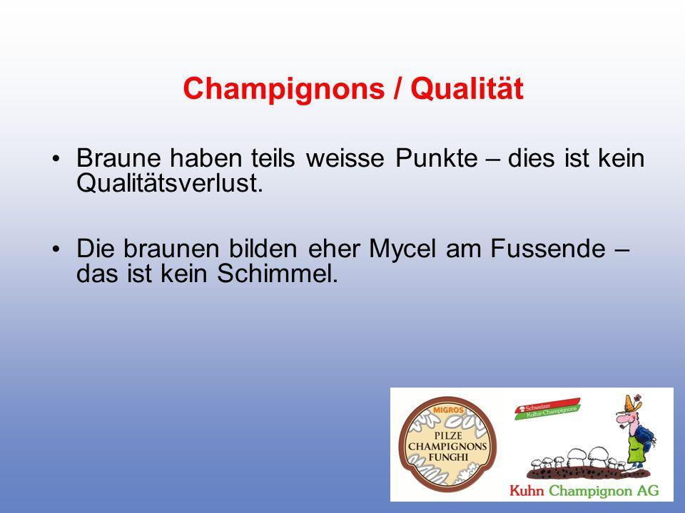 Champignons / Qualität