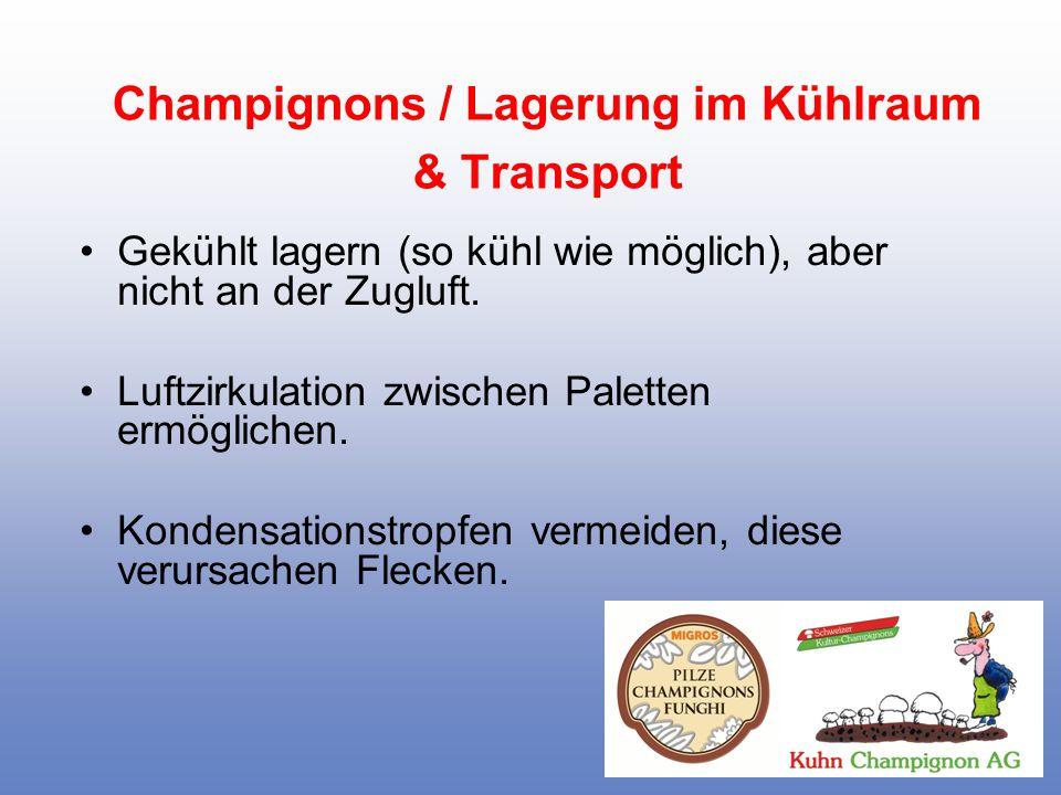 Champignons / Lagerung im Kühlraum & Transport