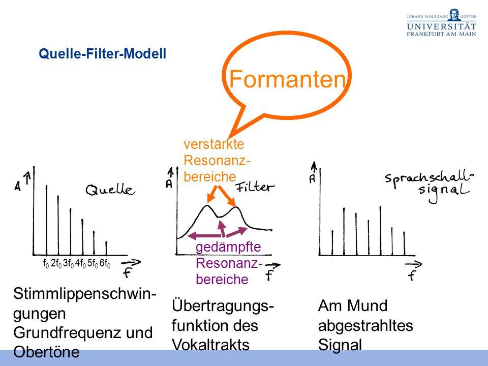 Ziemlich Mund Funktion Ideen - Anatomie Von Menschlichen ...