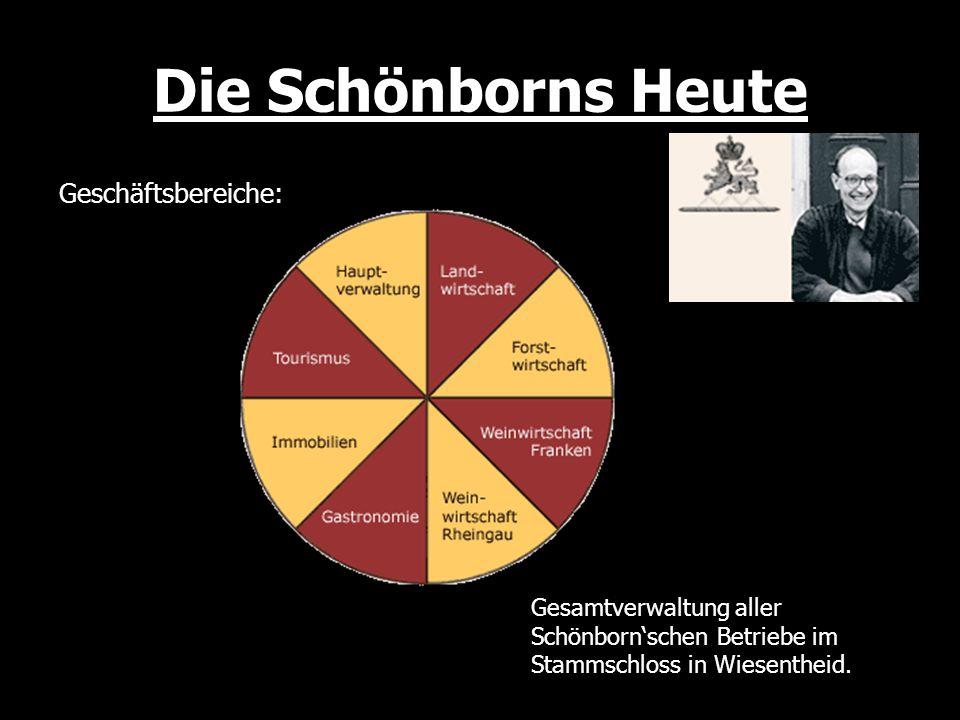 Die Schönborns Heute Geschäftsbereiche: