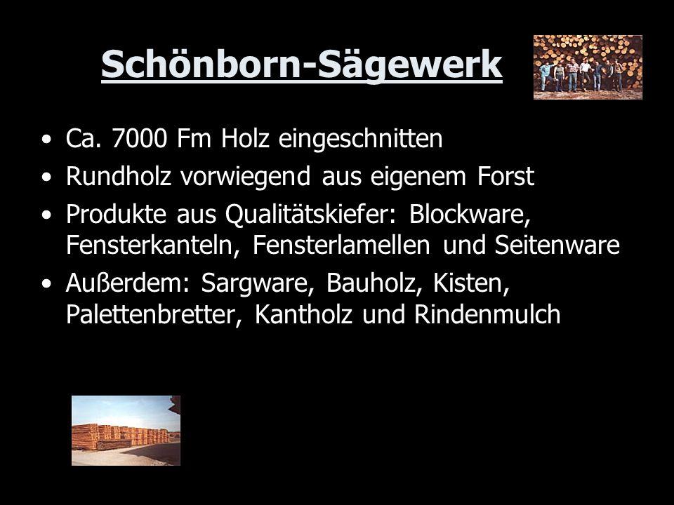 Schönborn-Sägewerk Ca. 7000 Fm Holz eingeschnitten