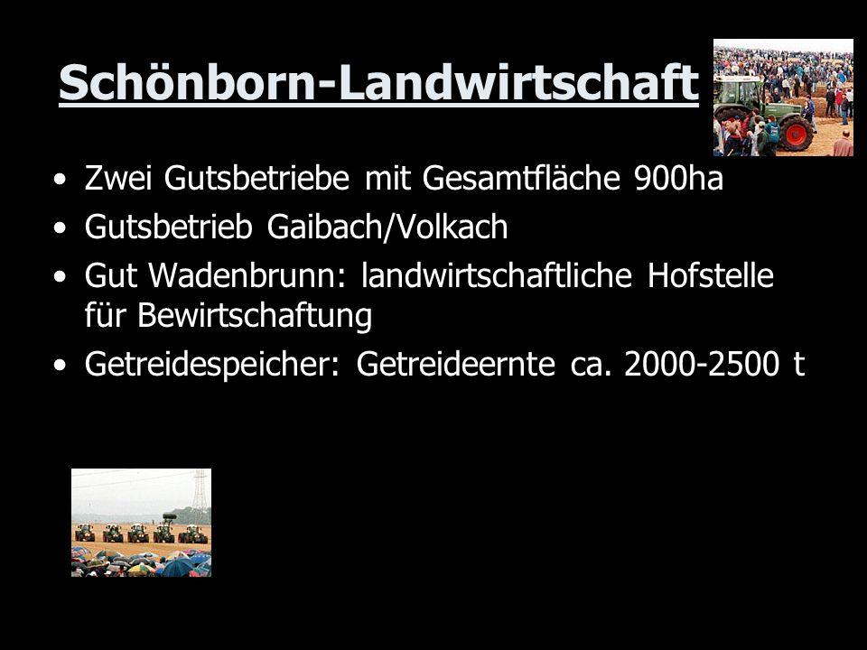 Schönborn-Landwirtschaft