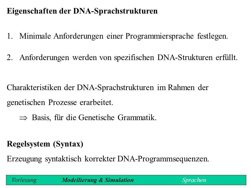 Eigenschaften der DNA-Sprachstrukturen