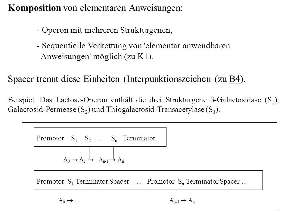 Komposition von elementaren Anweisungen: