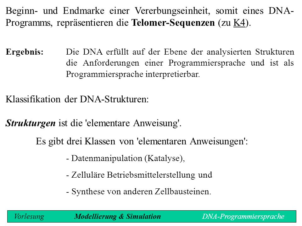 Klassifikation der DNA-Strukturen: