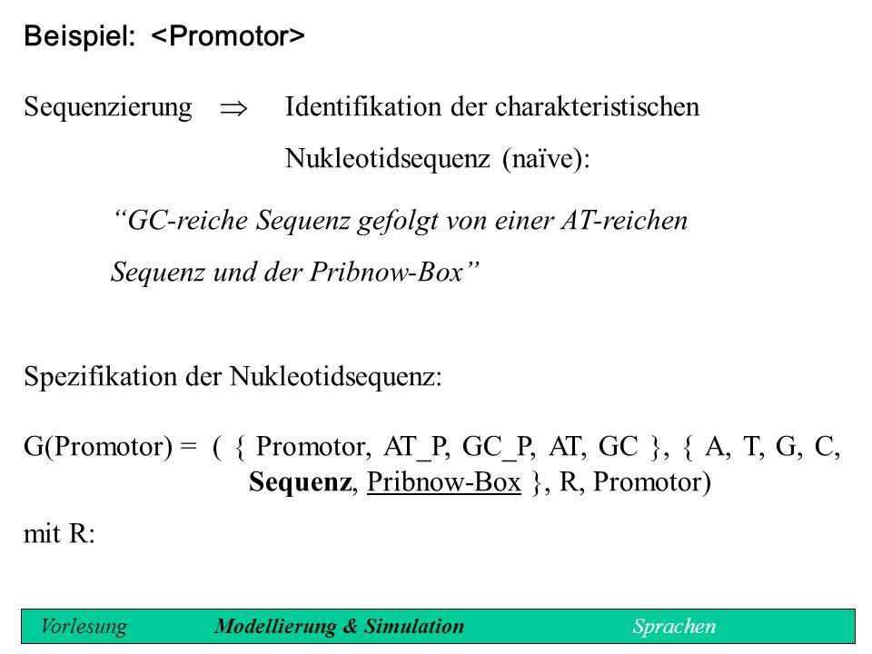 Beispiel: <Promotor>