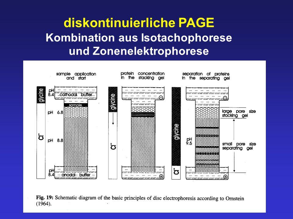 Kombination aus Isotachophorese und Zonenelektrophorese