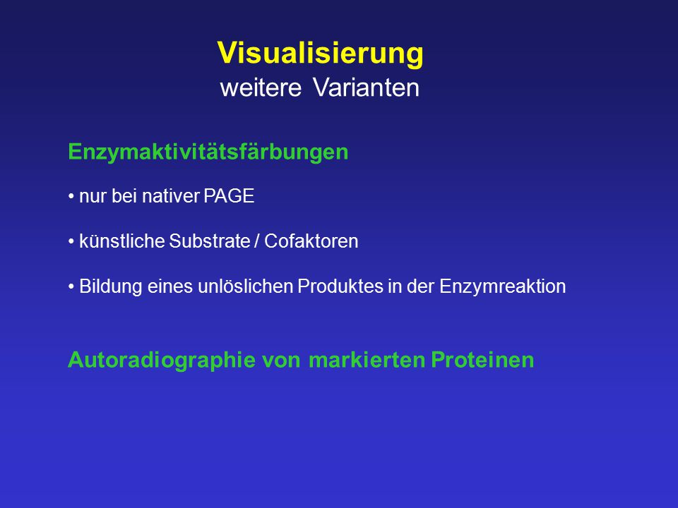 Visualisierung weitere Varianten Enzymaktivitätsfärbungen