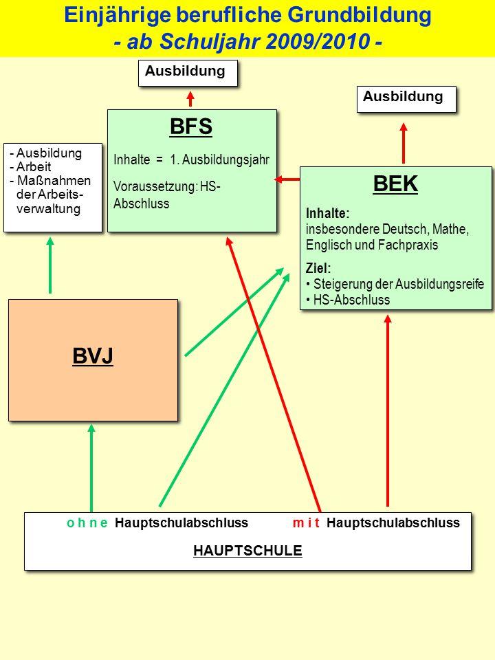 Berufseinstiegsschule (BVJ und BEK)