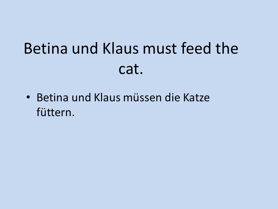 Betina und Klaus must feed the cat.