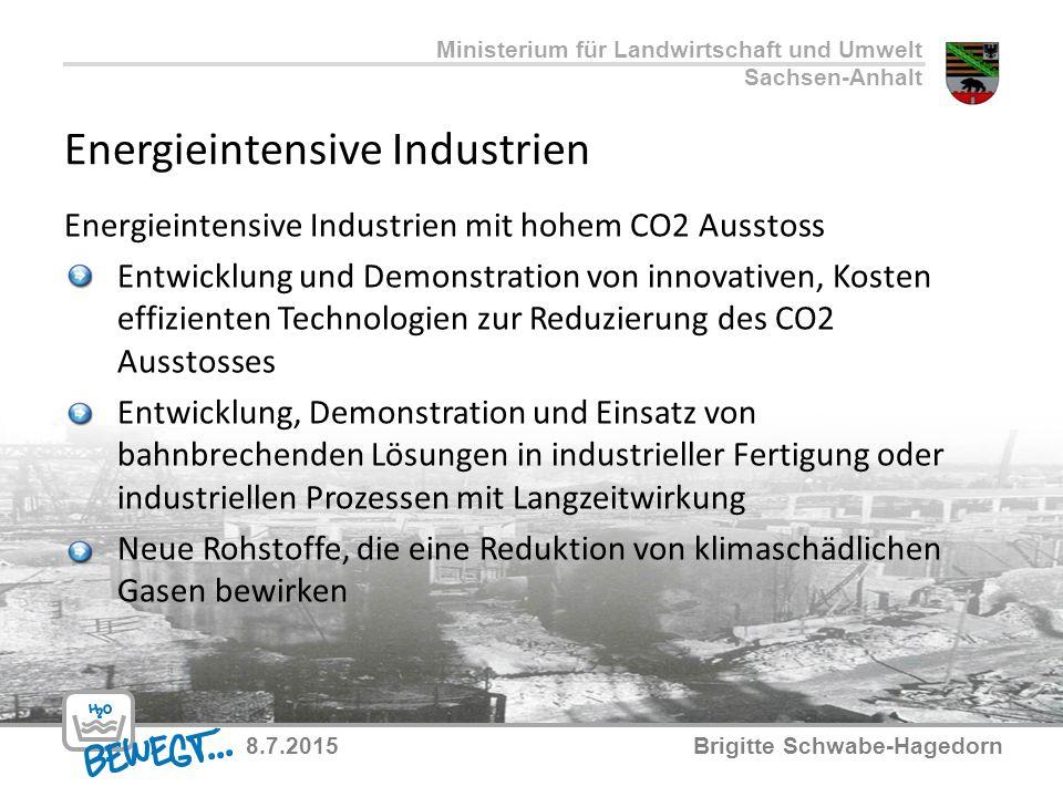 Energieintensive Industrien