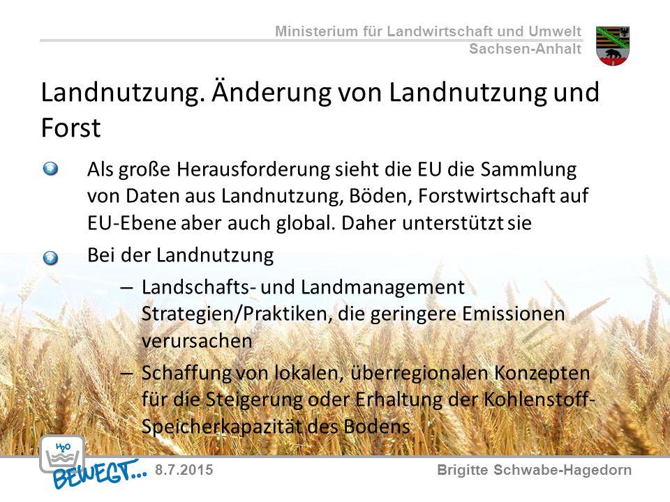Landnutzung. Änderung von Landnutzung und Forst