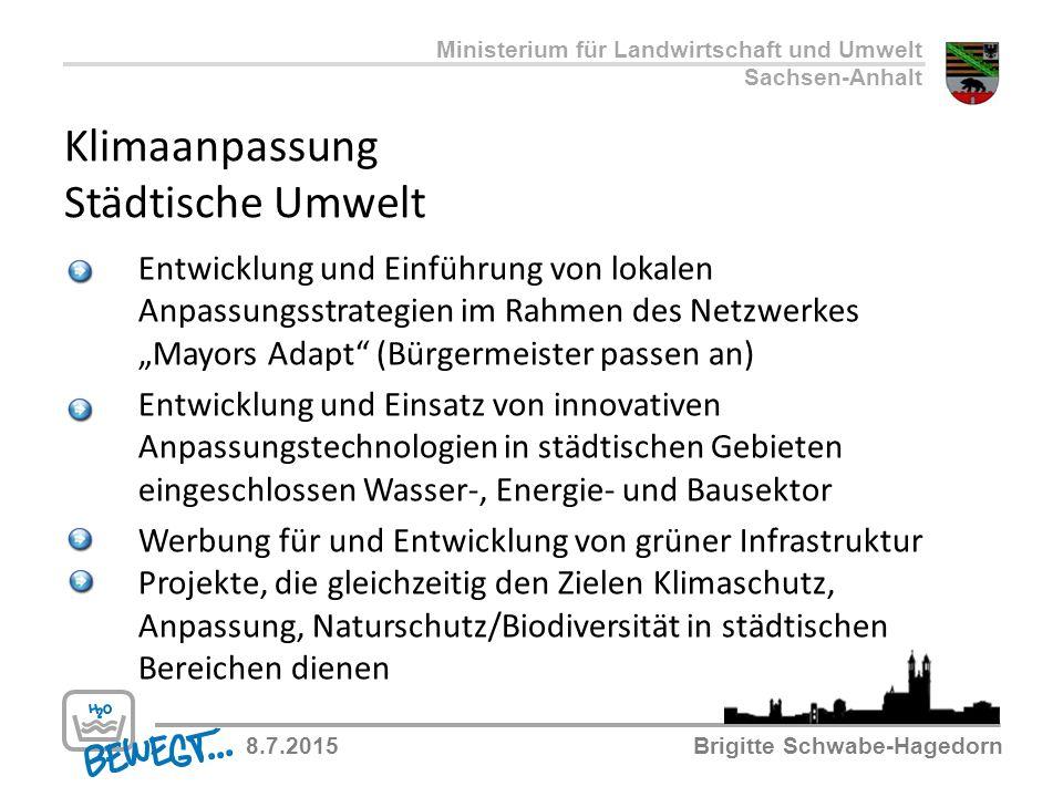 Klimaanpassung Städtische Umwelt