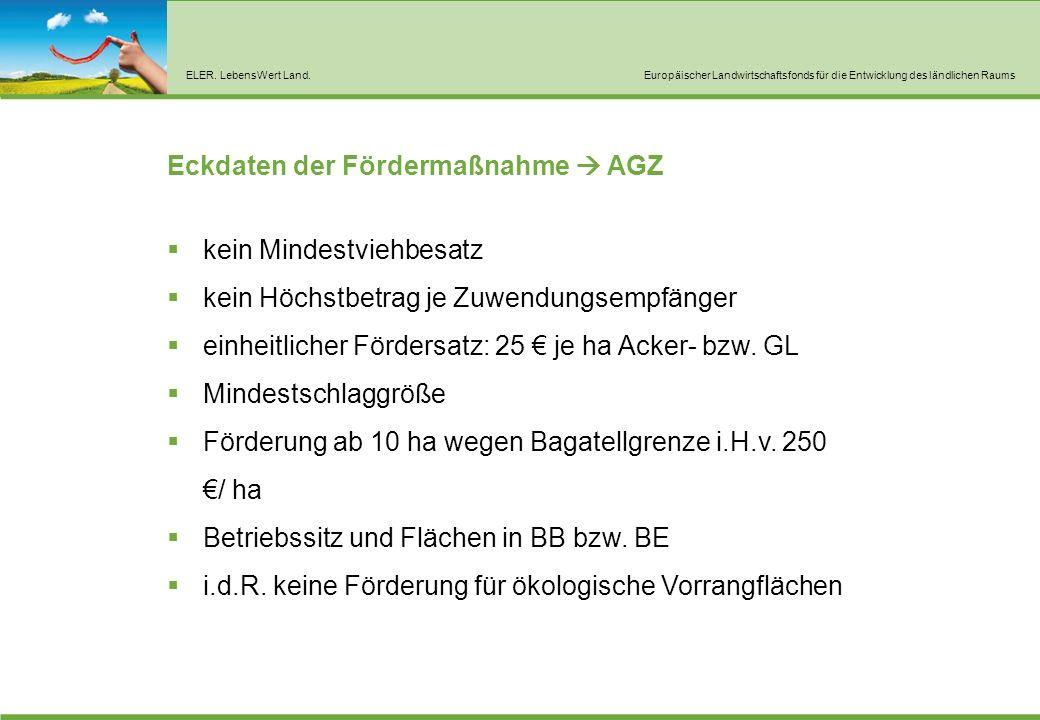 Eckdaten der Fördermaßnahme  AGZ Spreewald