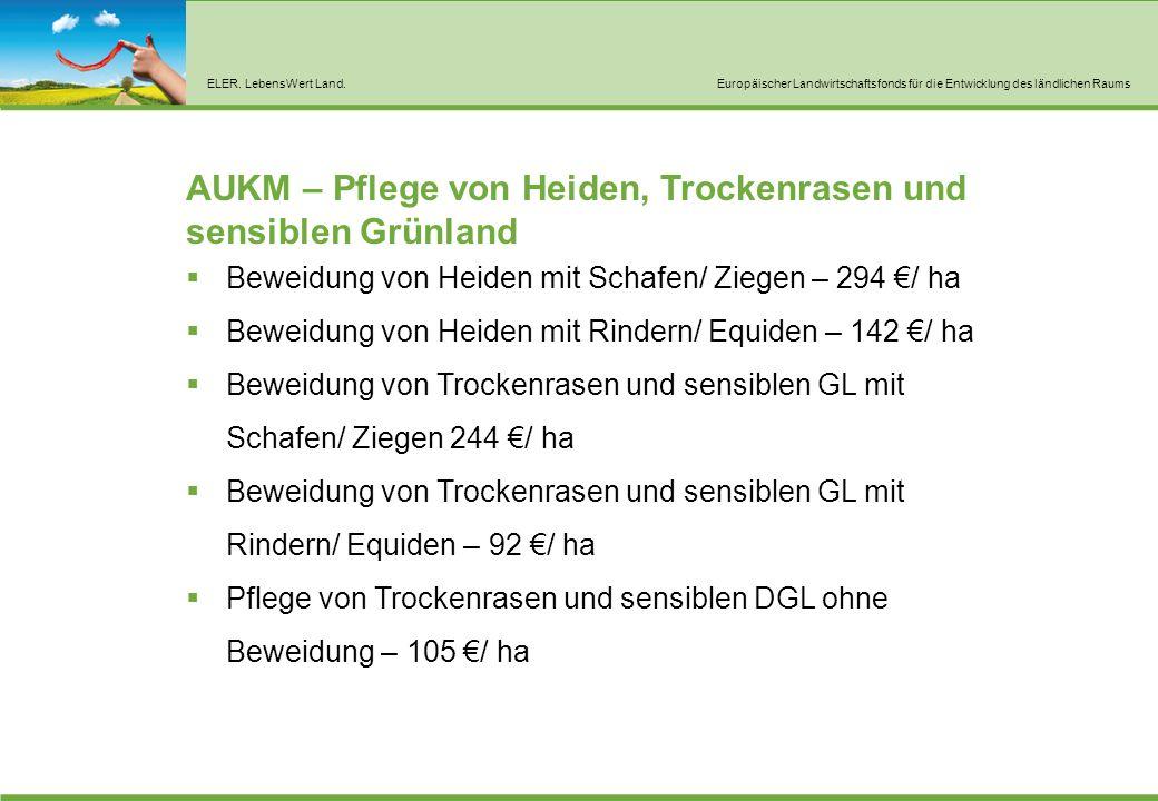AUKM – Nutzung von Acker als Grünland oder Umwandlung von Acker in DGL