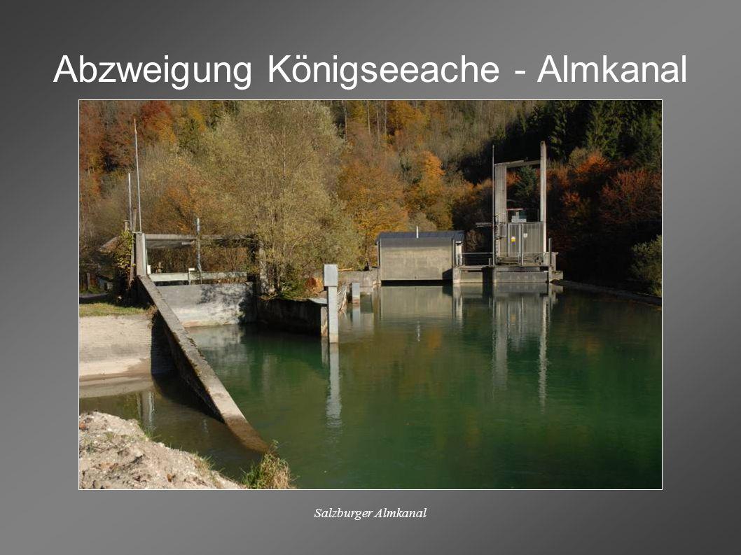 Abzweigung Königseeache - Almkanal