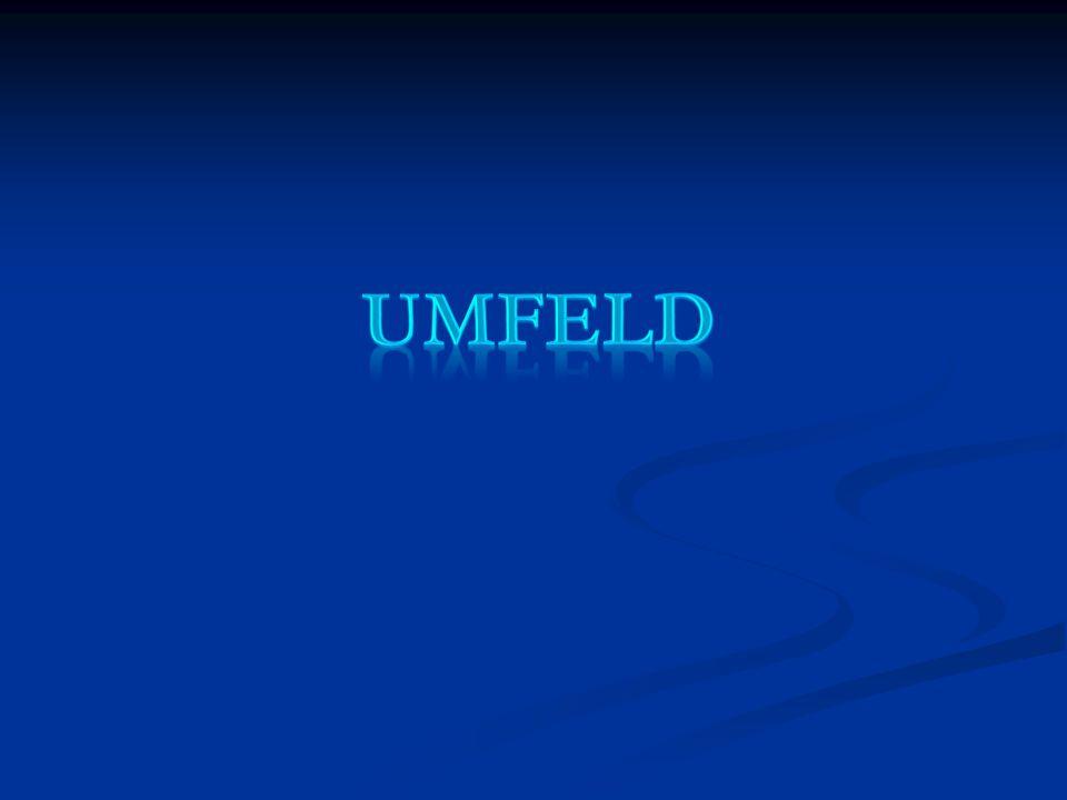 UmFELD