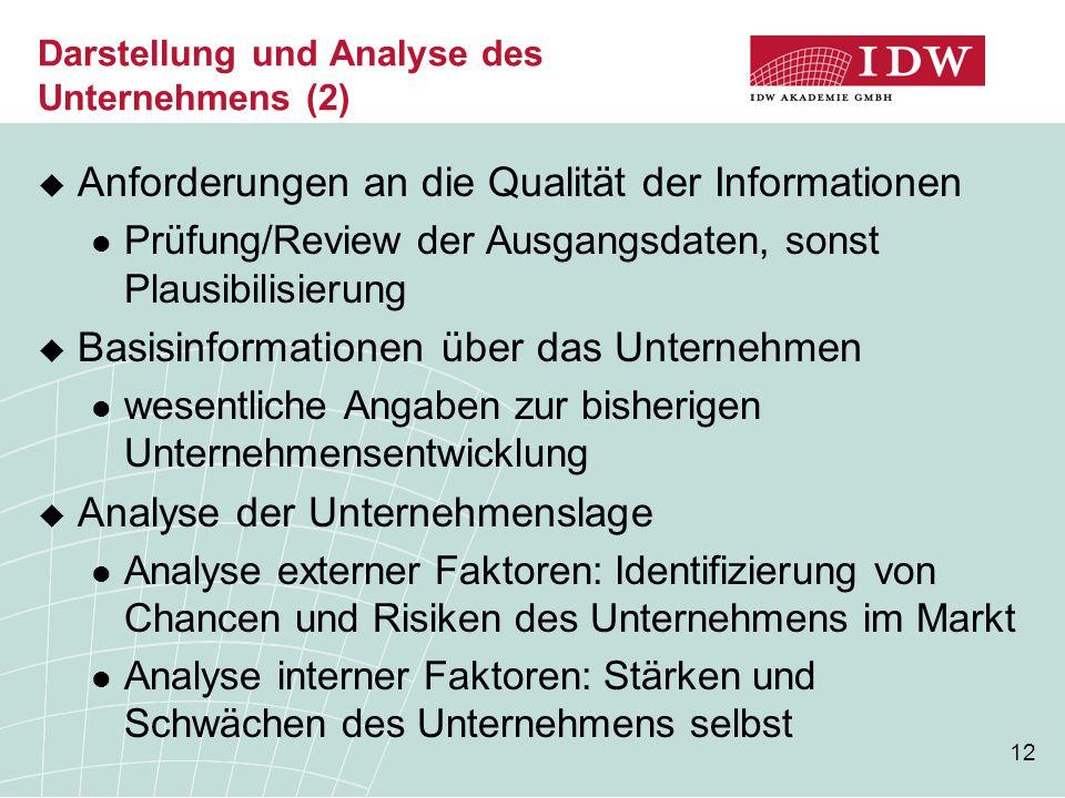 Darstellung und Analyse des Unternehmens (2)