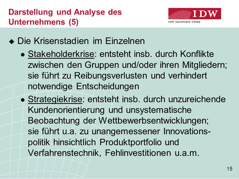 Darstellung und Analyse des Unternehmens (5)