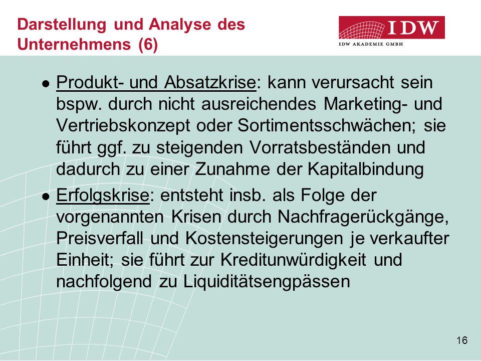 Darstellung und Analyse des Unternehmens (6)