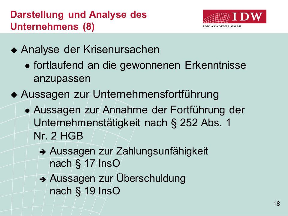 Darstellung und Analyse des Unternehmens (8)