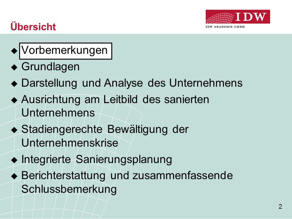 Darstellung und Analyse des Unternehmens