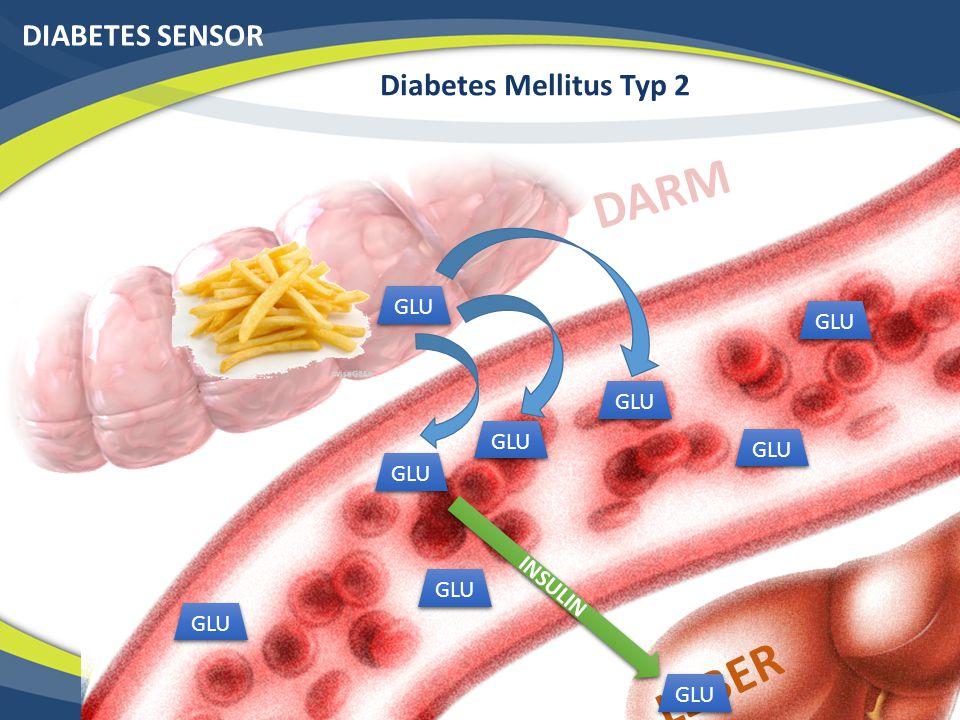 DARM LEBER DIABETES SENSOR Diabetes Mellitus Typ 2 GLU GLU GLU GLU GLU