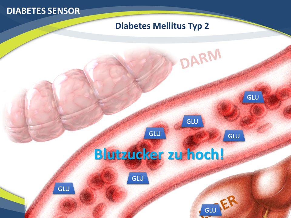 DARM Blutzucker zu hoch! LEBER DIABETES SENSOR Diabetes Mellitus Typ 2