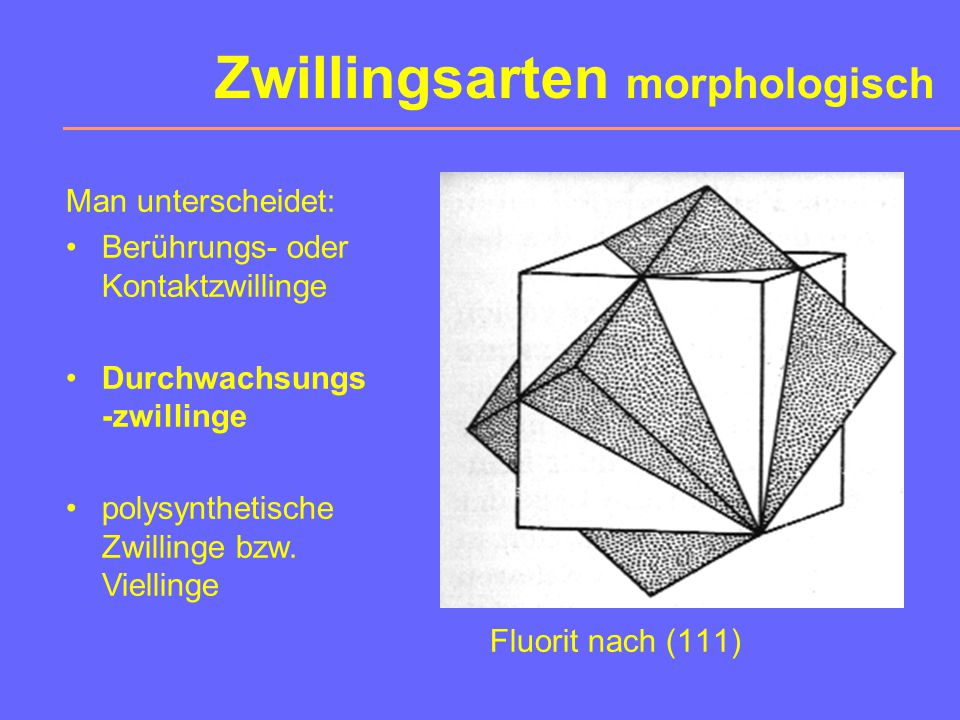 Zwillingsarten morphologisch